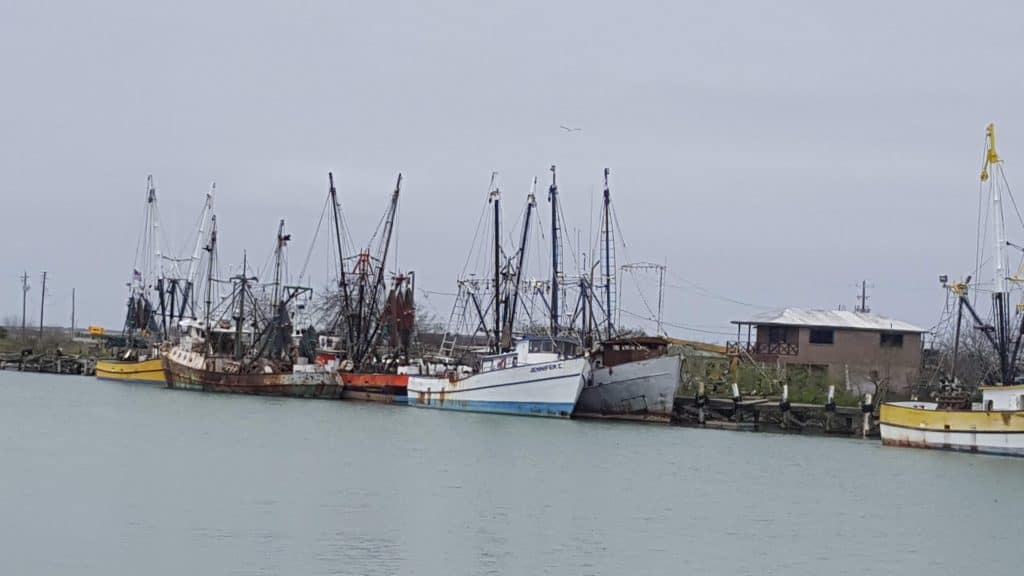 shrimp boats in brownsville texas