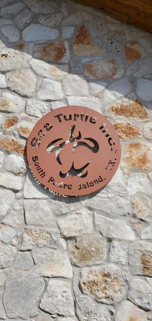 sea turtle inc south padre island
