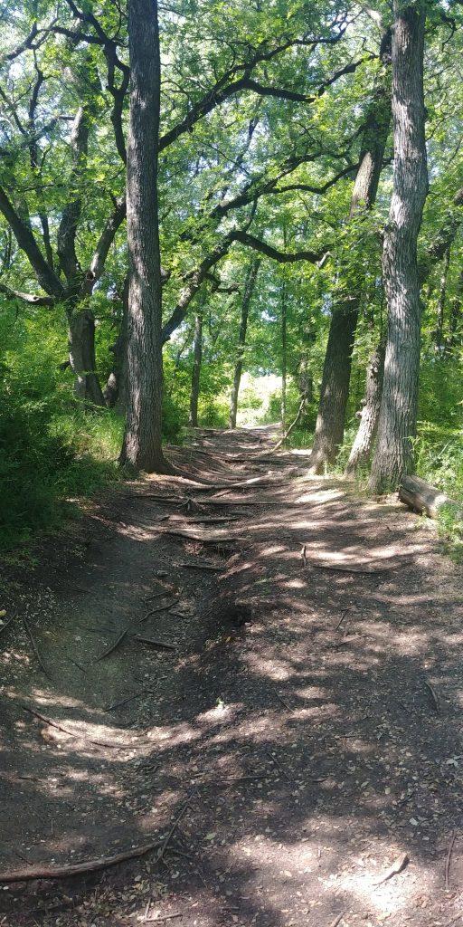 trail at cedar hill state park texas