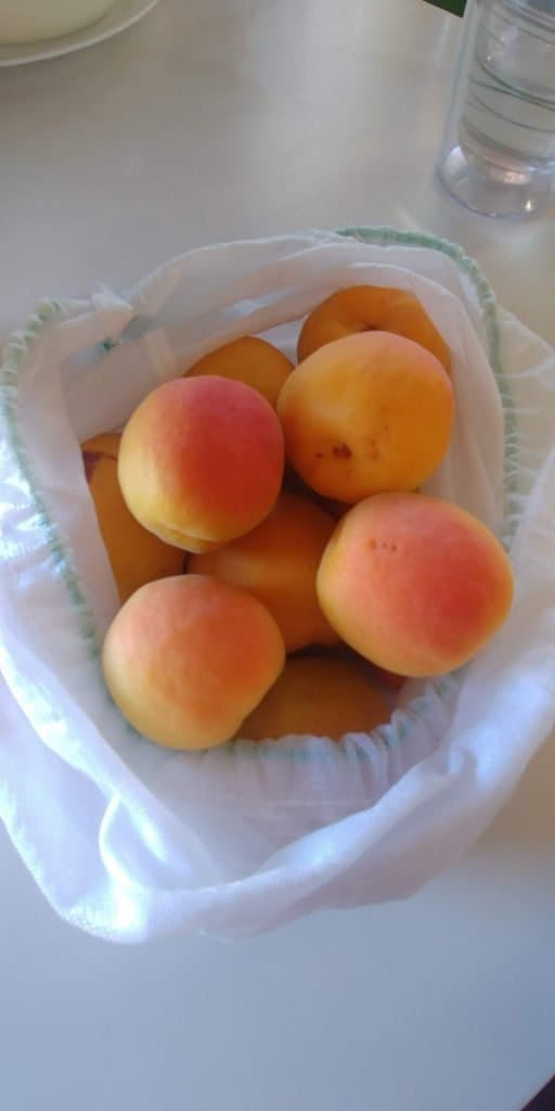 fresh apricots from glen canyon national recreation area