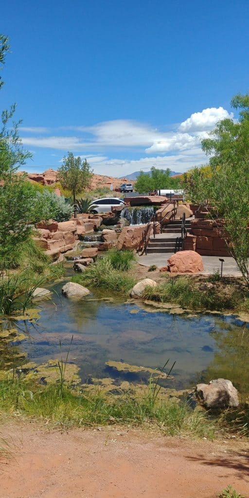water at red hills desert garden.  The garden is great free thing to do in st george utah.