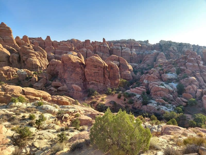 rock fins at arches national park