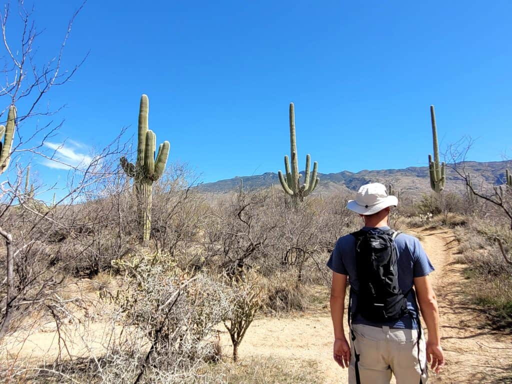 kevin with sunhat on hike in saguaro national park