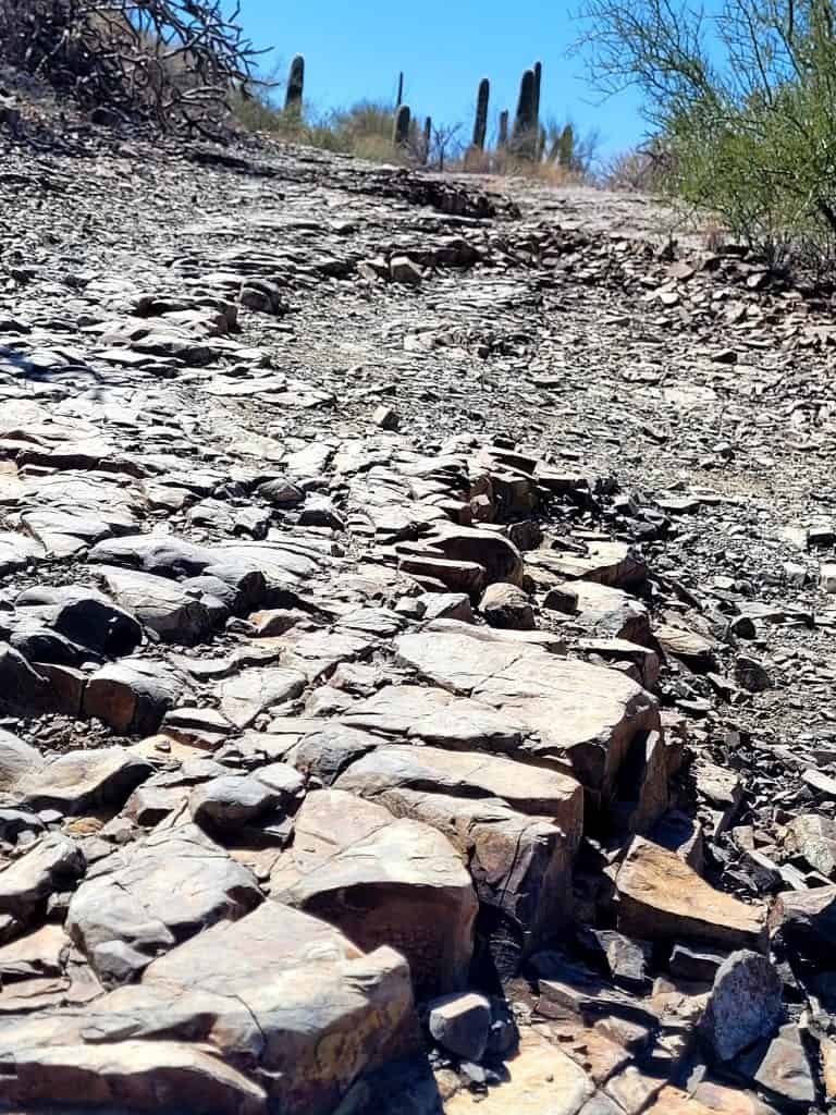 rocky path on king canyons trail