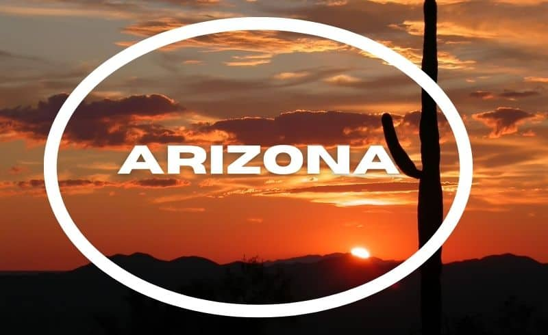 arizona cactus sunset
