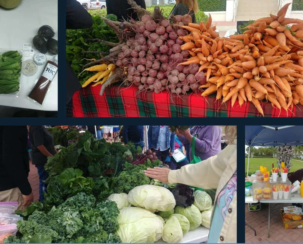 south padre island farmers market photo collage