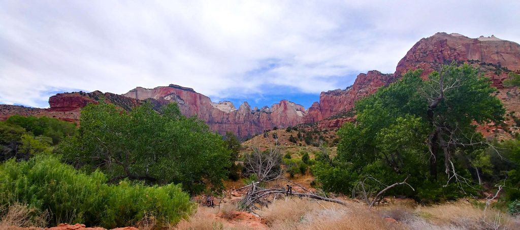 view of zion from bike ride along zion canyon scenic drive