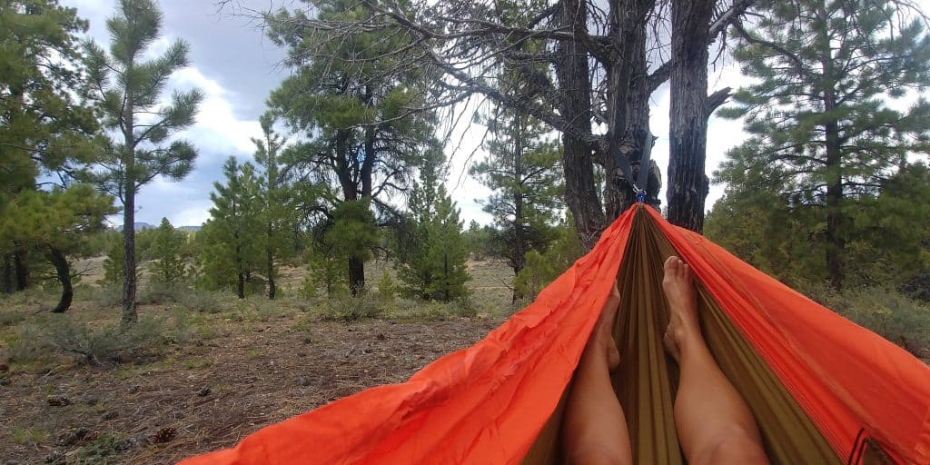 hammock in dixie national forest near red canyon utah