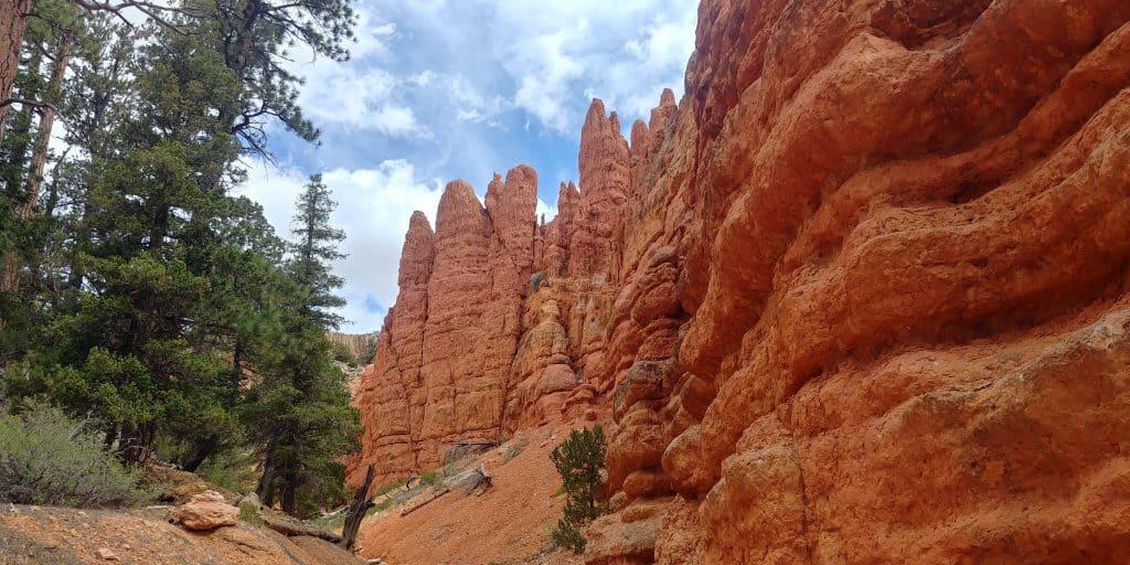 hoodoo trail near red canyon utah
