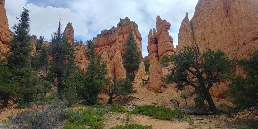 hoodoos trail near red canyon utah
