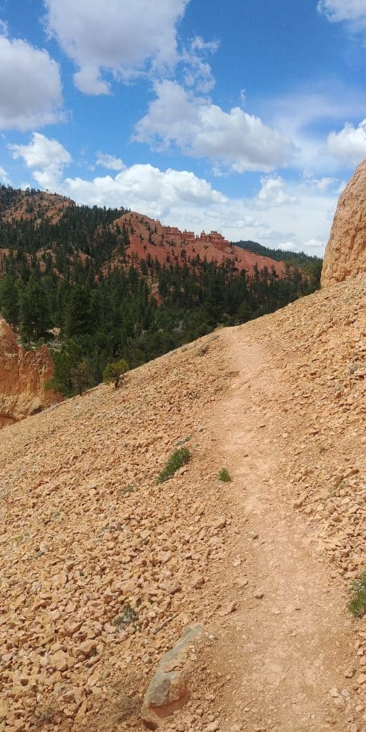 birds eye trail at red canyon