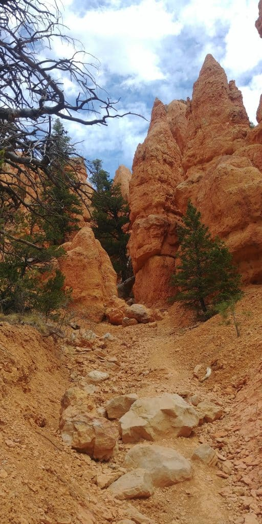 pink ledges trail near red canyon utah