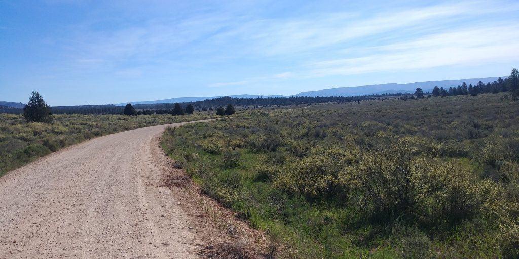 gravel road to thunder mountain bike trail near red canyon utah