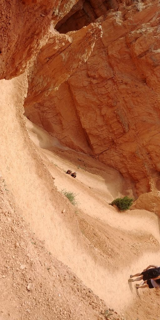 switchbacks on navajo loop in bryce canyon