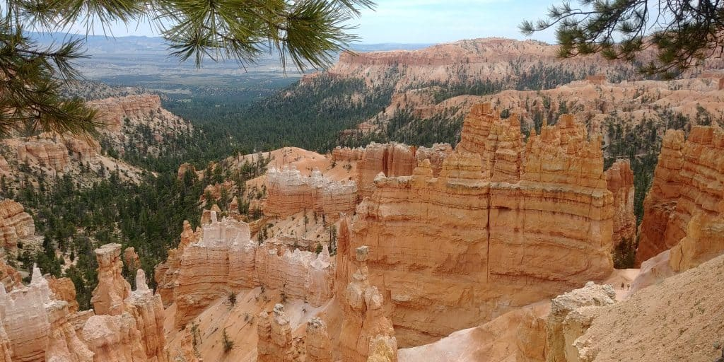 view from top of rim trail