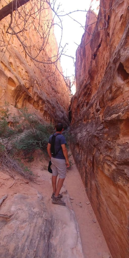 kevin in cohab canyon
