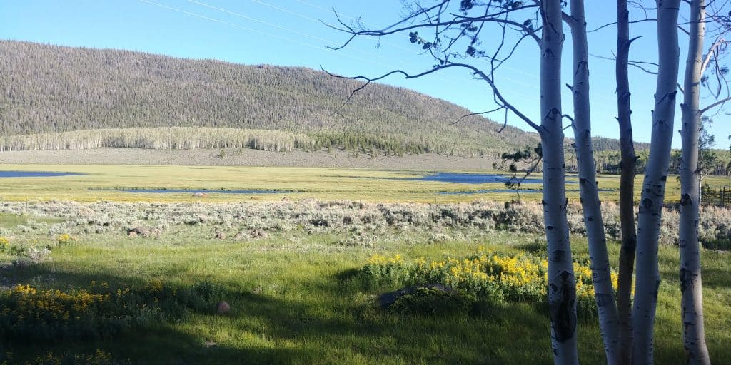 fish lake at doctor creek campground in utah national forest