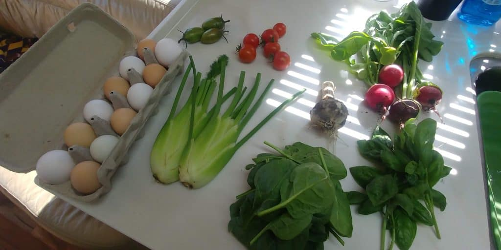 fresh products from kraays garden