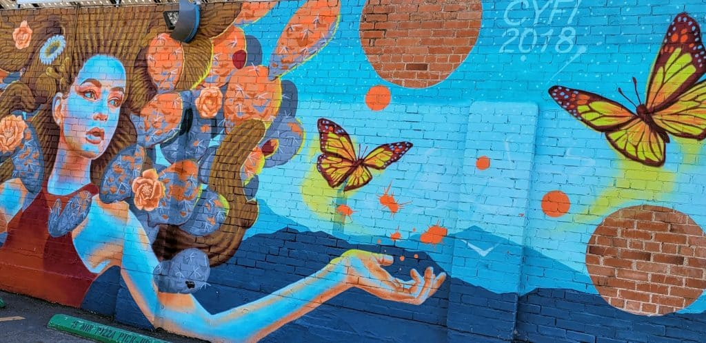 butterfly mural in Tucson historic 4th district