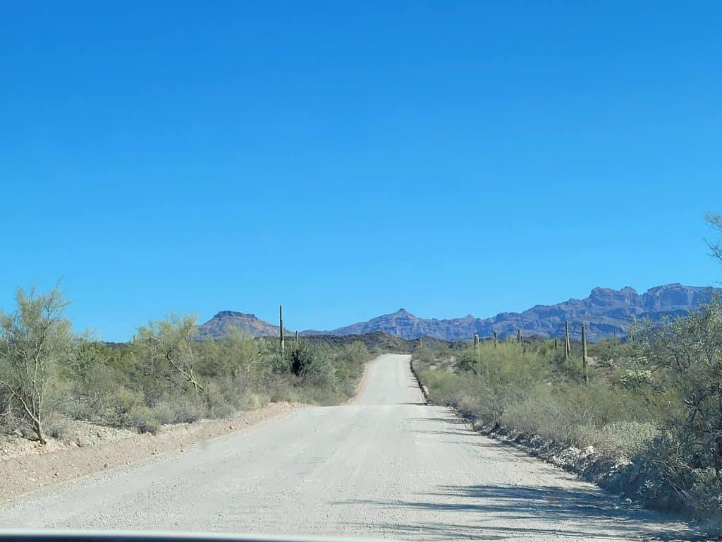 ajo mountain loop drive at organ pipe cactus national monument