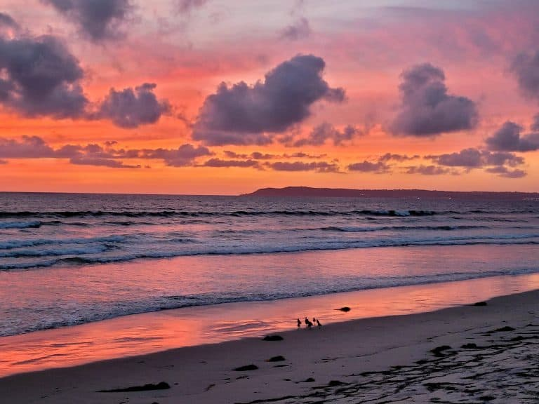 What to do on Coronado Island: A Beach Escape Just Minutes from San Diego