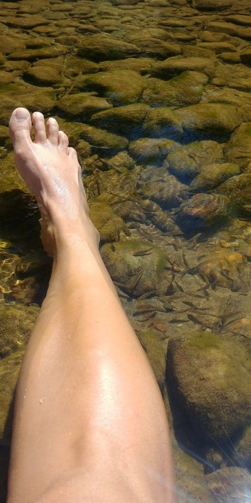 fish nibbling my feet in the river at dugway campground in wyoming