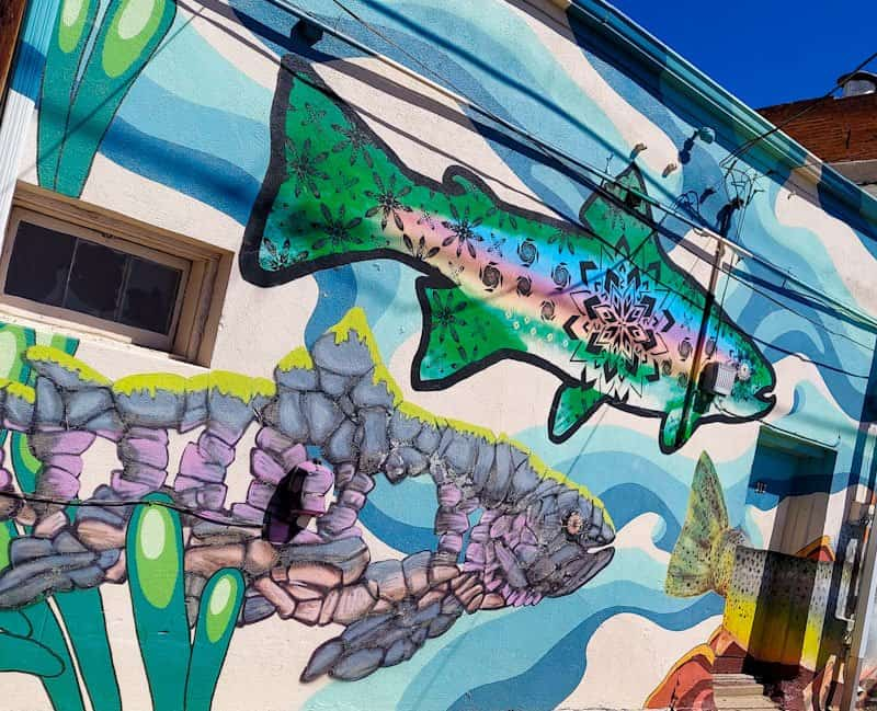 trout mural in downtown laramie