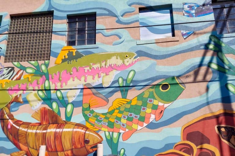 Downtown Laramie: Street Art, Beer and More Activities Not to Miss