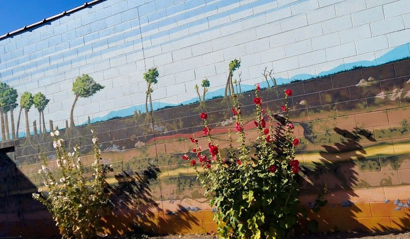 actual flowers growing front of natural murals