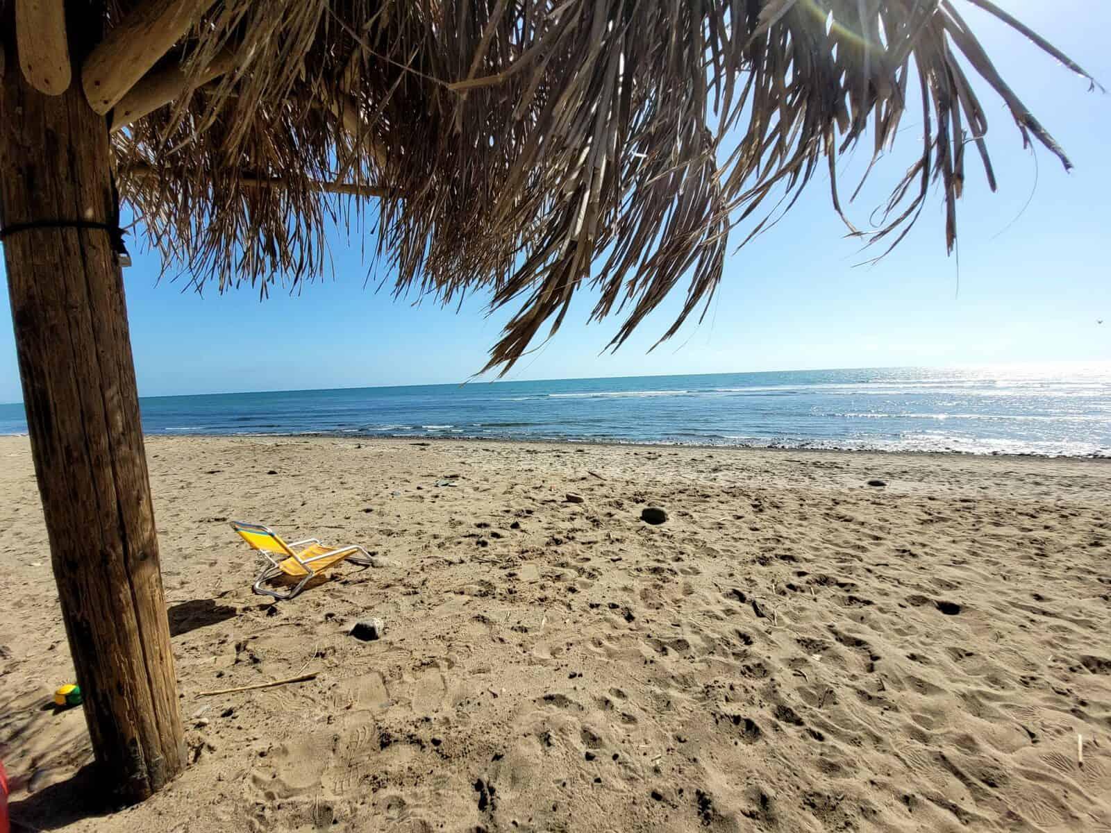 beach chair under palm umbrella on san onofre old man's surf beach in san clemente california