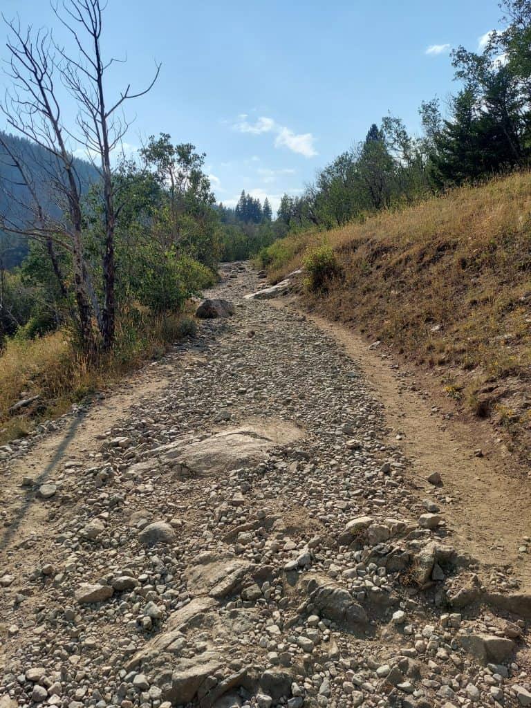 single track trail near nederland colorado