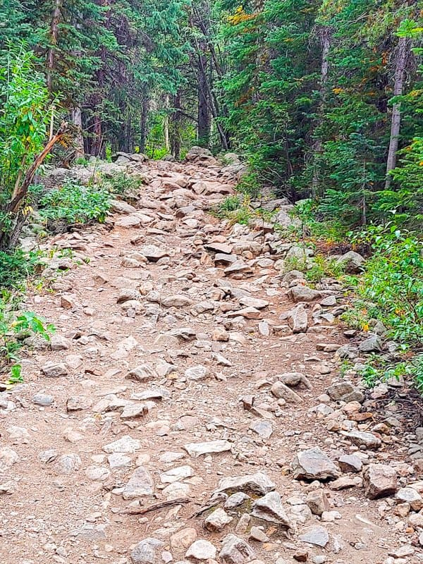 the moderate rate hike to Lost lake from hessie trailhead is all uphill for the first 2 miles