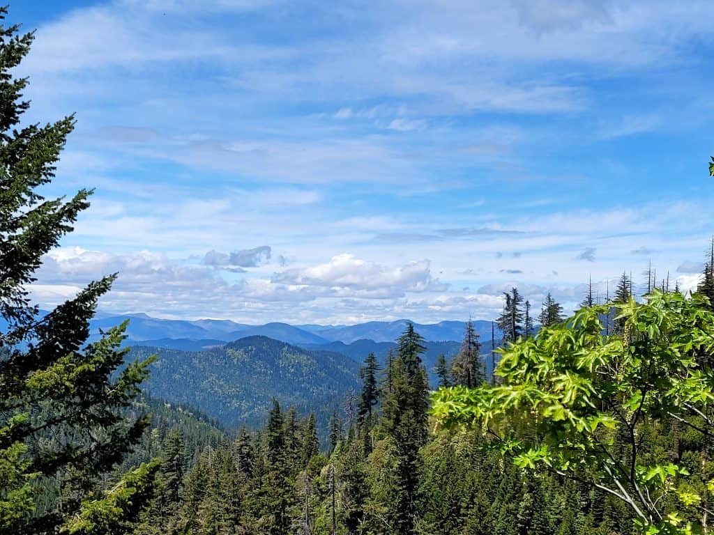 view from cliff nature trail in oregon caves