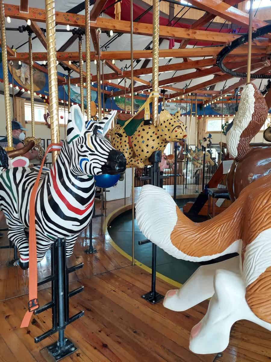 carousel of happiness is can't miss attraction in nederland colorado