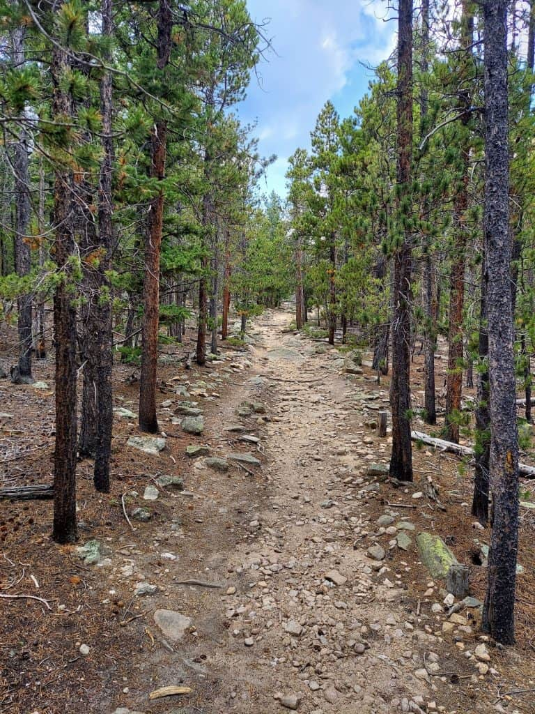 Complete Guide to Hiking Trails at Golden Gate Canyon State Park: What to Expect Before You Go