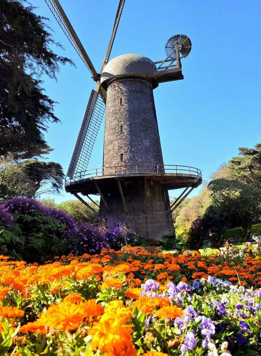 dutch windmills in golden gate park in san francisco