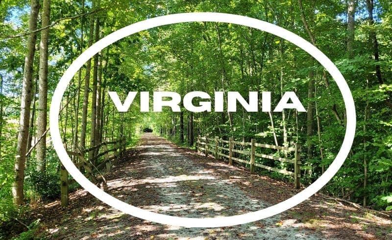 virginia pillar picture