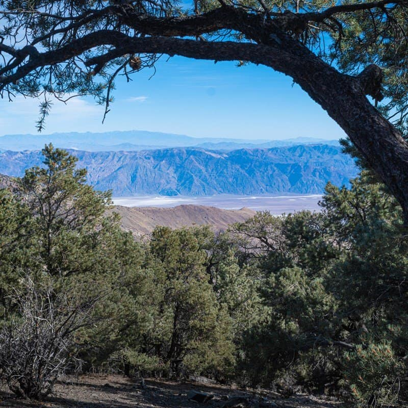 view at mahogany flats campground in death valley